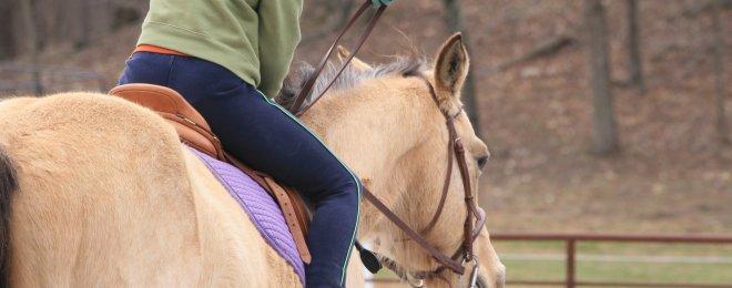 Terapia con caballos
