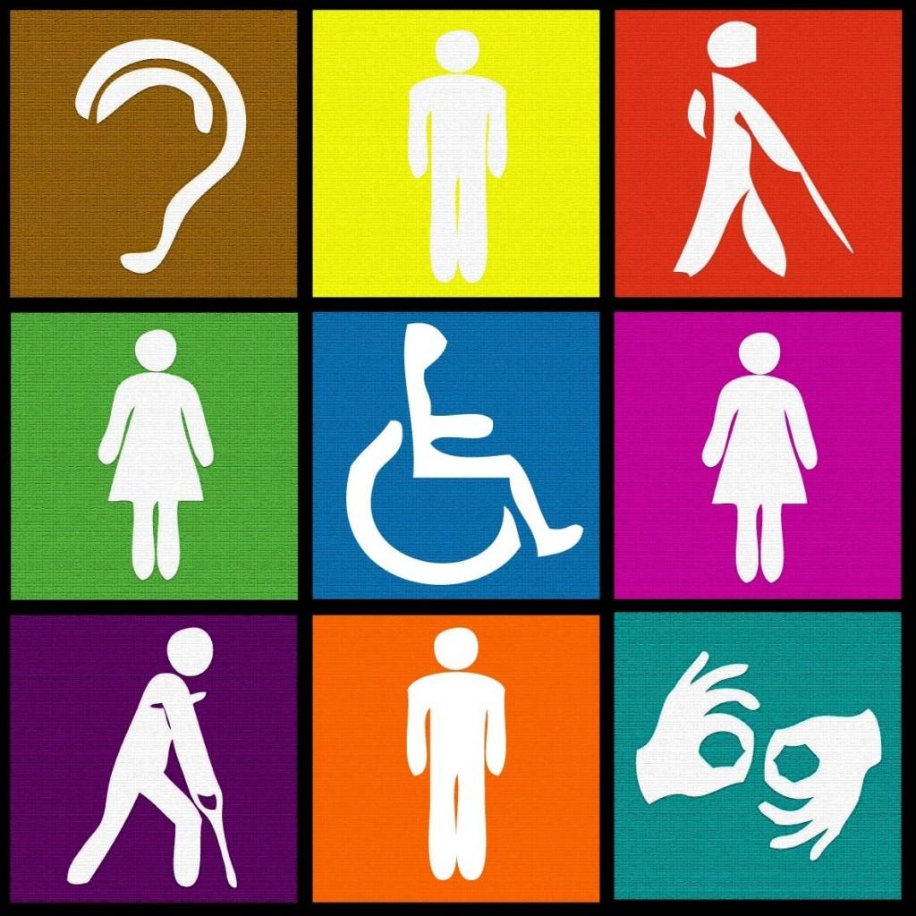 Causas de discapacidad