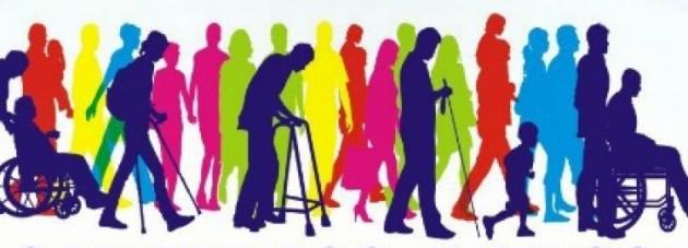 Principales causas de discapacidad