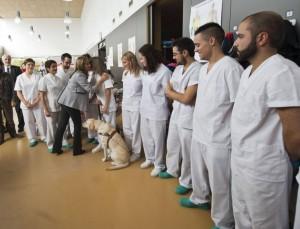Centro de Fisioterapia de Aspyam Castilla y León