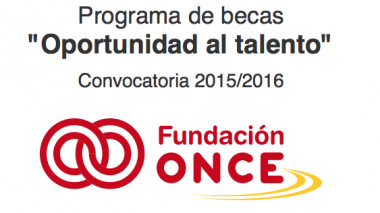 Fundaci'on ONCE